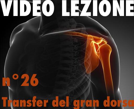 Video lezioni26