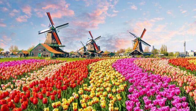 vivere-in-olanda-top-1900x1080